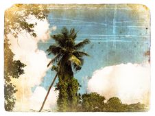 Free Coconut Palm Tree, Sky, Clouds. Old Postcard. Royalty Free Stock Photo - 22944945