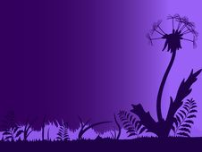 Free Night Silhouette Of Dandelion Stock Photo - 22949410