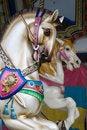 Free Carousel Horse Royalty Free Stock Photo - 22959345