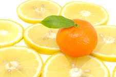 Free Tangerine With Green Leaf On Lemon Slices Stock Photography - 22960602