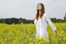 Free Brunette Woman In A Yellow Flowers Field Stock Photography - 22972042