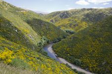 Free Hills Landscape Royalty Free Stock Image - 22975416