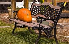 Free Pumpkins On Bench. Stock Photography - 22995202