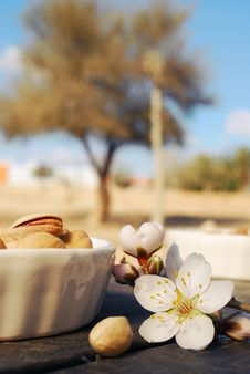 Free Almond Flowers And Pistachios Stock Photo - 22995380