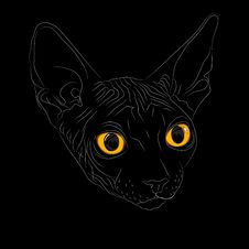 Vector Sketch The Cat Breed Sphynx Royalty Free Stock Photos