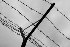 Free Barbed Wire Fence Stock Photo - 232260