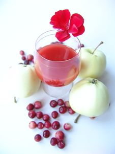 Free Red Drink With Autumn Gifts Royalty Free Stock Image - 233206