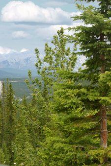 Free Rocky Mountains Royalty Free Stock Photos - 234418