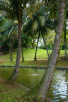 Free Tropical Paradise Royalty Free Stock Image - 235086