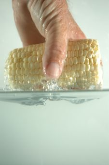 Free Hand And Corn In Water 2 Royalty Free Stock Images - 236539