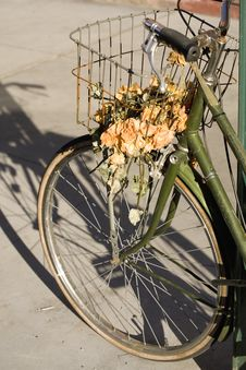 Free Bike And Dried Roses Color Stock Images - 2300514