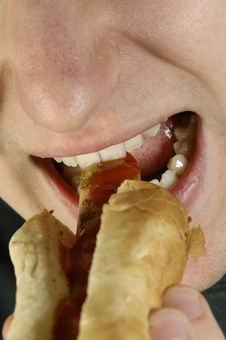Free Hot-dog And Mouth Stock Photo - 2303660