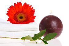 Free Zen Treatment Royalty Free Stock Photos - 2304718