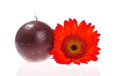Free Aromatherapy Stock Photos - 2304793