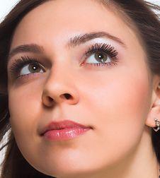 Free Beauty Stock Photo - 2305330