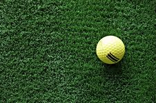 Free Golf Stock Images - 2305554
