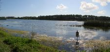 Free Lake Taylor In Largo, Florida Stock Photography - 2307162