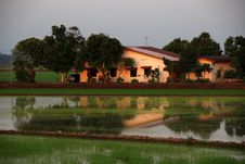 Free Paddy Field  House Royalty Free Stock Image - 2309446