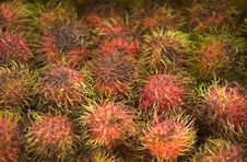Free Rambutan Stock Photos - 2309943