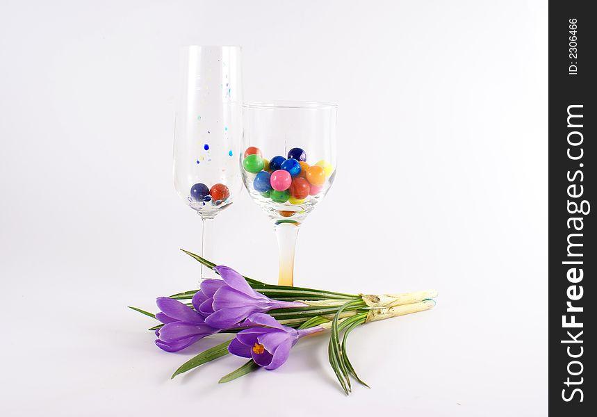 Violet tulip flower in glass