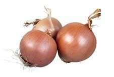 Free Onion Stock Photo - 23001850