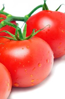 Free Tomatoes Closeup Stock Photo - 23002520