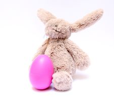 Free Easter Bunny And His Egg Stock Photography - 23003552