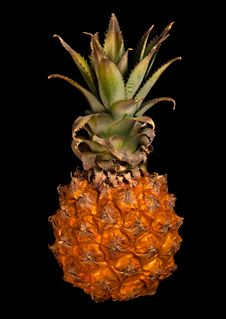 Free Little Pineapple Stock Photography - 23005752
