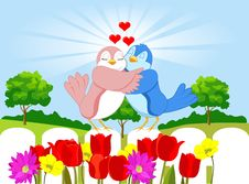 Free Love Birds Royalty Free Stock Image - 23014046