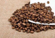 Free Grains Of Coffee Lie On A Saucer Royalty Free Stock Photo - 23034525