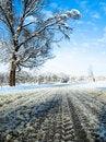Free Winter Road Stock Photos - 23044303