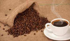Free Coffee Stock Images - 23040254