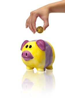 Free Savings In Piggybank With Gold Coins Royalty Free Stock Photos - 23045748