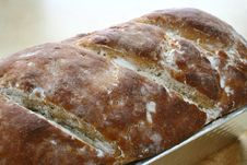 Free Fresh Bread Royalty Free Stock Photography - 23049567