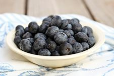 Free Bowl Of Blueberries Royalty Free Stock Photo - 23049935