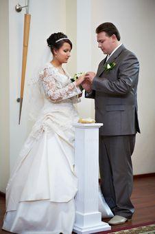 Free Elegant Groom Wears Wedding Ring Happy Bride Royalty Free Stock Images - 23053769