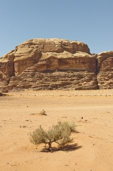 View Of The Desert In The Wadi Rum Stock Images