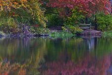 Free Autumn Foliage Reflection In Lake Royalty Free Stock Photo - 23066395