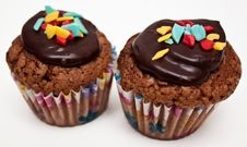 Free Two Muffins Stock Image - 23066501