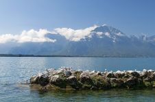 Free Landscape With A Lake Geneva Stock Photos - 23068193