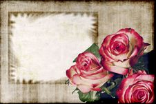 Free Roses On Grunge Background Stock Photos - 23068283