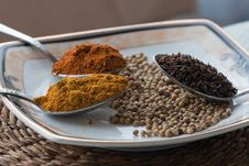 Free A Variety Of Spices Stock Photos - 23071013