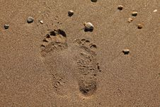 Free Two Different Footprints On Sand Stock Images - 23071464