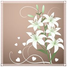 Free Beautiful Spring Wallpaper With Lily Flowers Stock Images - 23071624