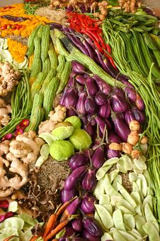 Free Assortment Of Fresh Vegetables Stock Photography - 23073522