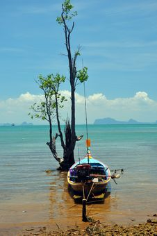 Free Boat And Tree, Thailand Stock Photos - 23076783