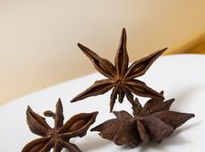Free Star Anise Royalty Free Stock Photography - 23092887