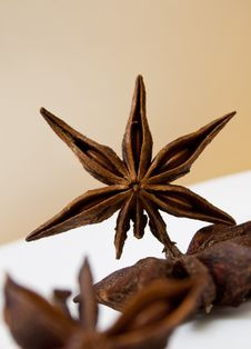 Free Star Anise Stock Photo - 23093310