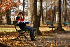 Free Boy Reading Book Sitting In Park Royalty Free Stock Photos - 23097468