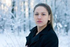 Free Beautiful Winter Stock Image - 2310101